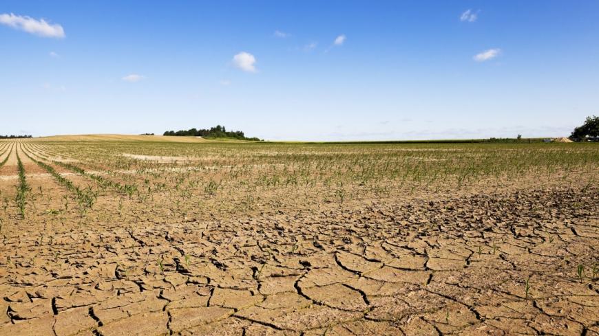 Wnioski o oszacowanie szkód w gospodarstwie rolnym w związku z suszą, która wystąpiła na terenie gminy Nekla.